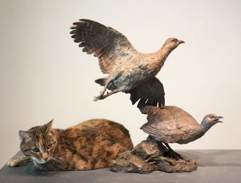 Grey-Winged Franklin pair & maquette - Size: H: 46, L:49, W:27 (life size) / Miniature: H:24. Edition of 10